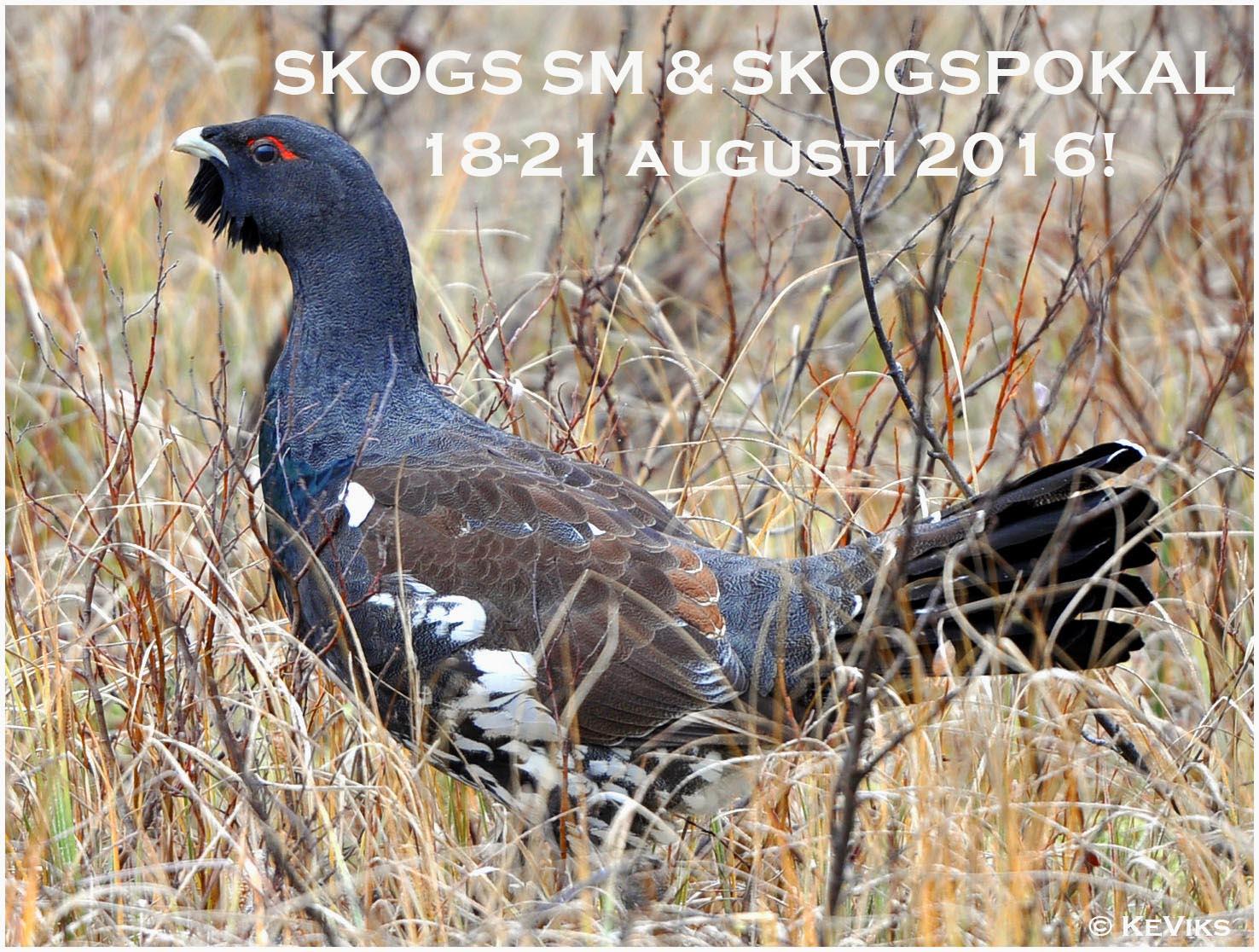 SKOGS SM 2016