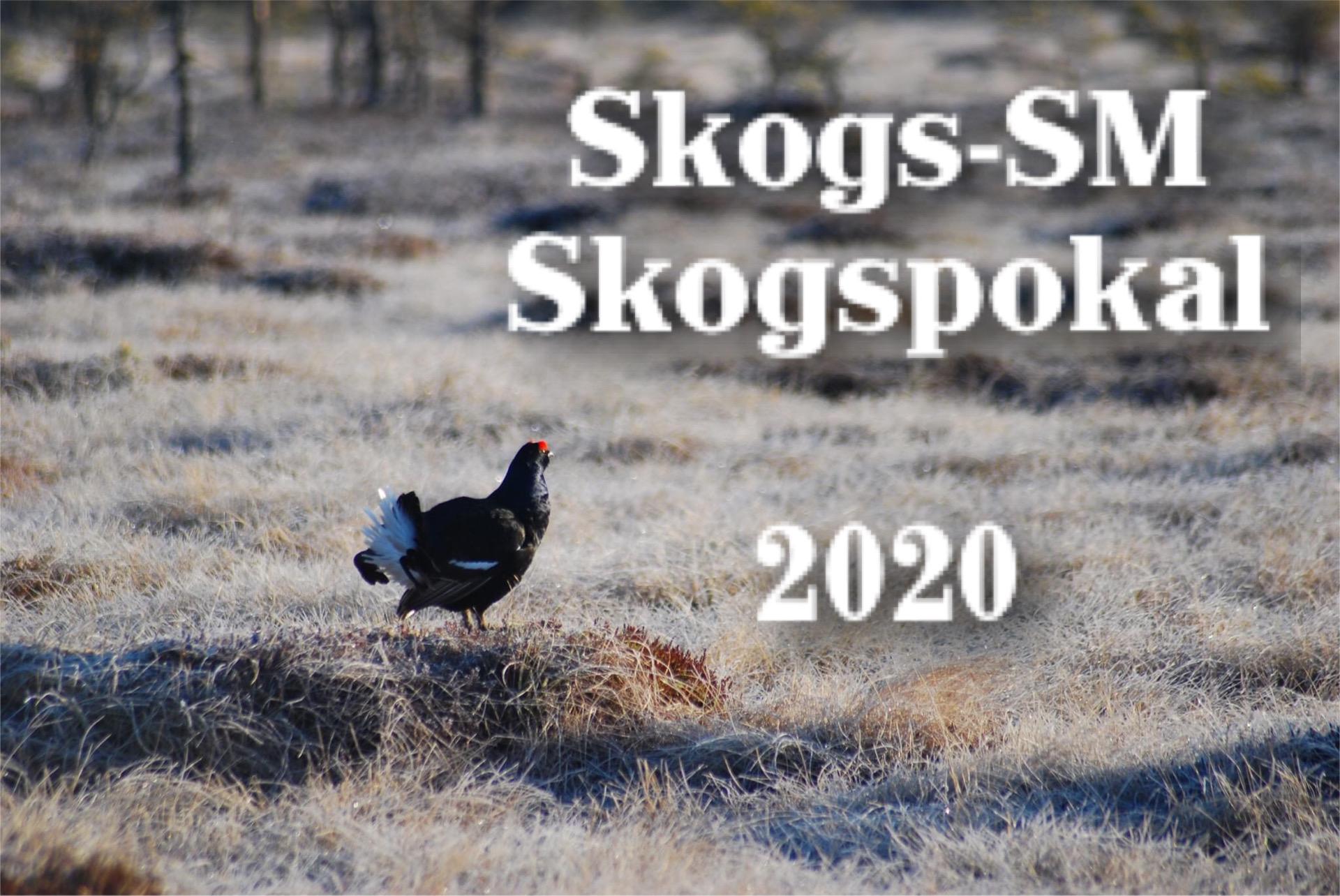 Skogs-SM_Skogspokal 2020
